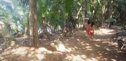 Moyenne trail