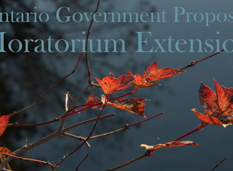 Ontario government proposes six-month extension of the moratorium