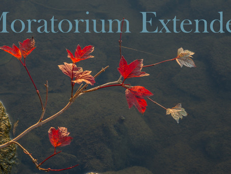 Moratorium Extended
