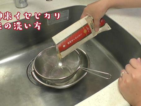 おいしく炊ける玄米の洗い方「拝み洗い」