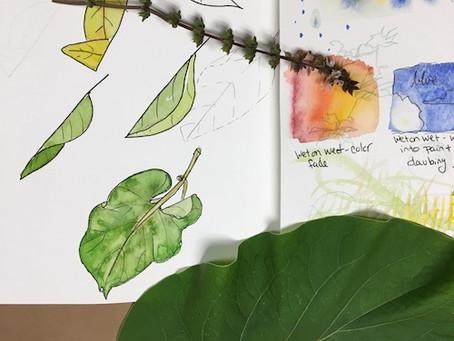 Why Make Nature Inspired Art?