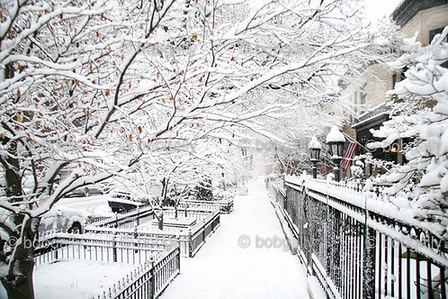 Snowy side street with flag