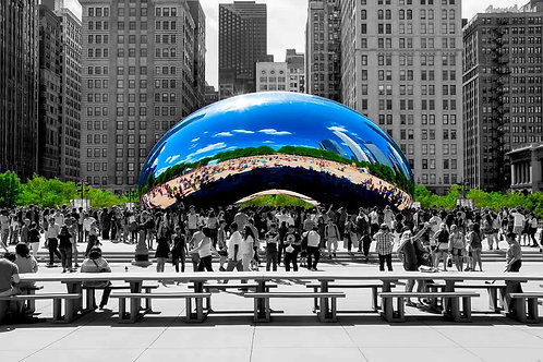 Chicago Bean Cloudgate Black and White with pop of color