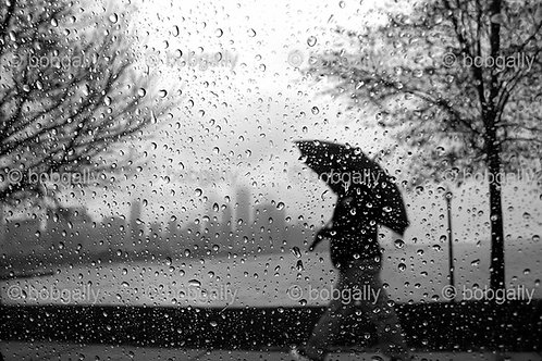 Chicago Umbrella