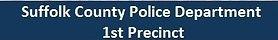 1st Precinct.jpg