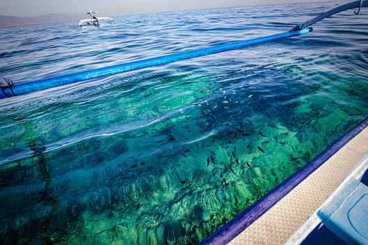 Diving Spot in Menjangan