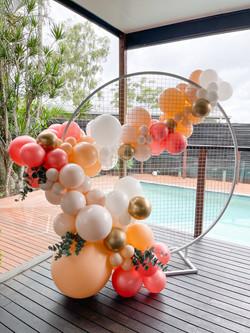 White Mesh Backdrop & Balloons