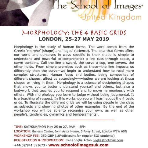 Morphology Flyer.jpg