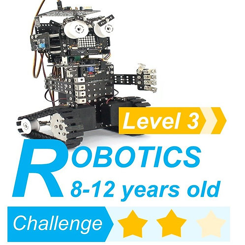 Microbot (Level 3)