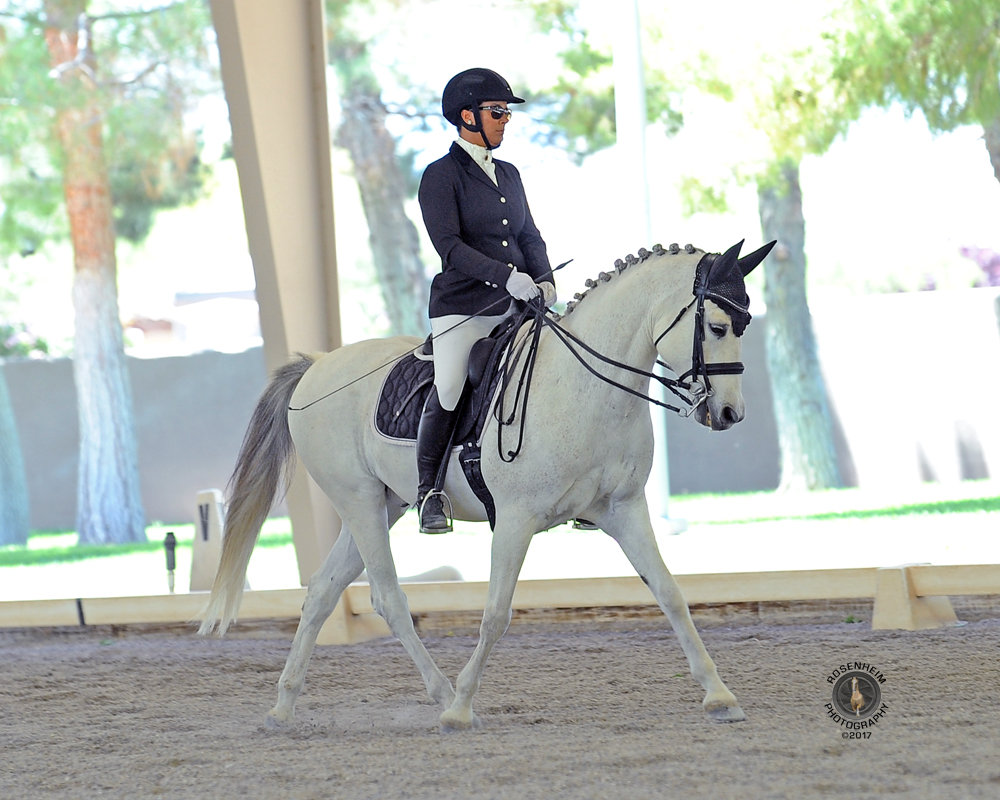 Private Lesson 30 min Own/Leased Horse
