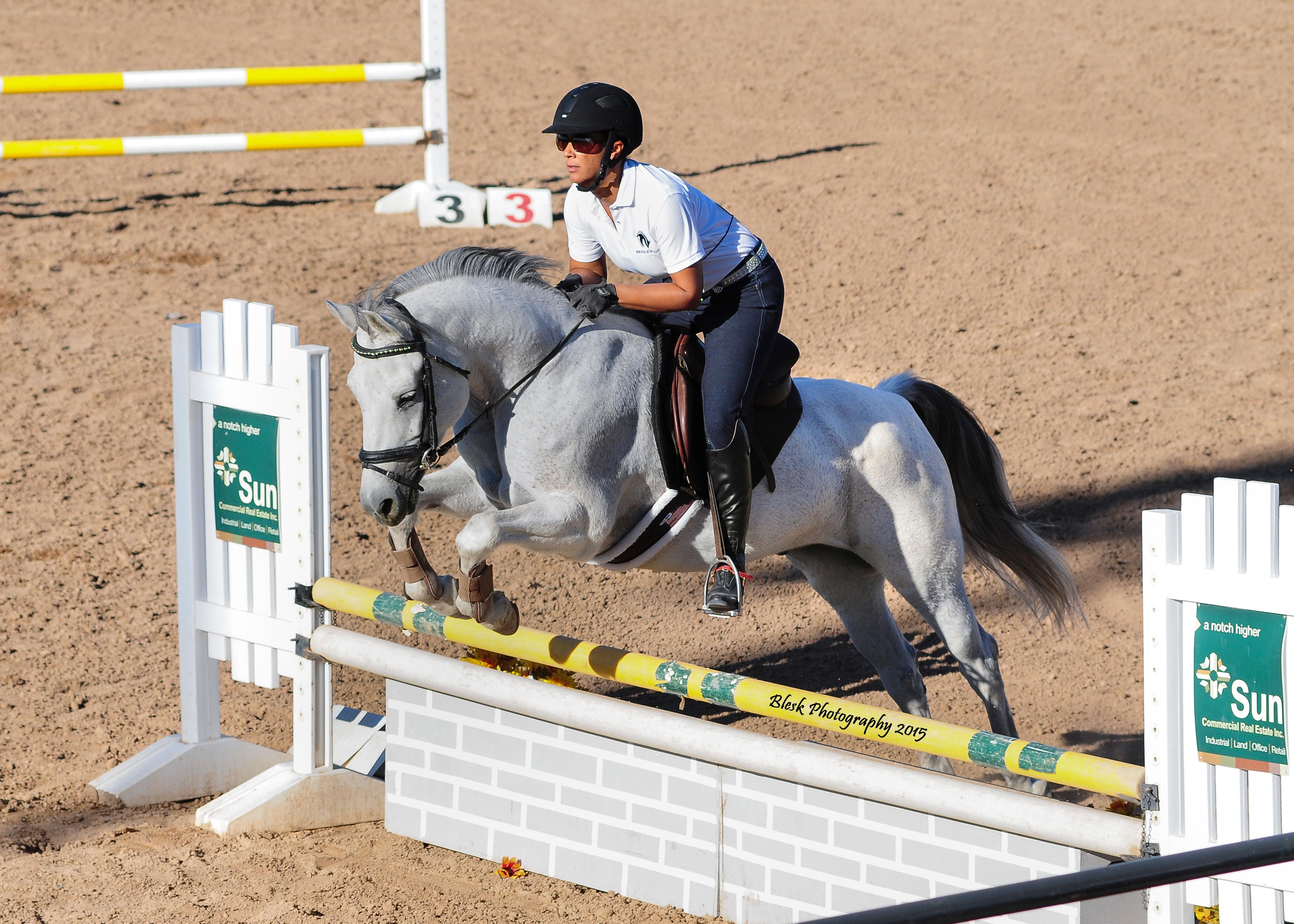 Ponies 101