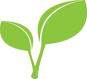 green-leaves-graphics.jpg