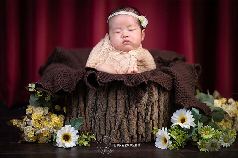 Themed-Baby-Photo-Studio