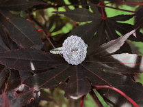 double halo engagement ring 49.JPG
