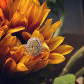 Fancy Yellow Diamond Oval Halo ring. I love you so much. Unfortunately being a jeweler means you have to say goodbye.jpg
