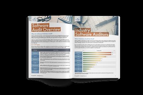 SAM Top Software Audit Challenges Guide