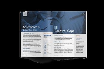 Salesforce Licensing Gotchas Guide