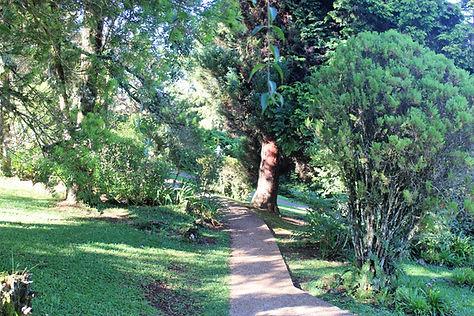 Jardim Pousada Águia da Montanha