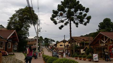 Centro Monte Verde