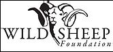 logo_wsf.png