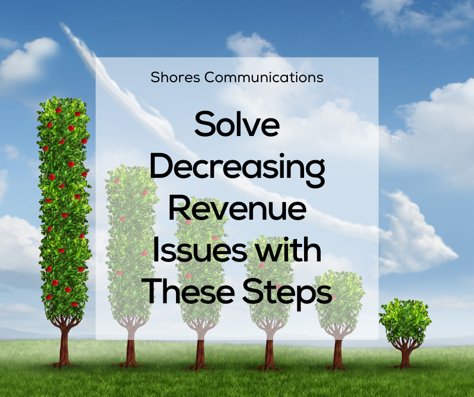 Solve Decreasing Revenue Issues with These Steps