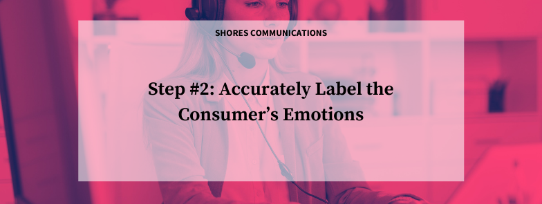 Step #2: Accurately Label the Consumer's Emotions