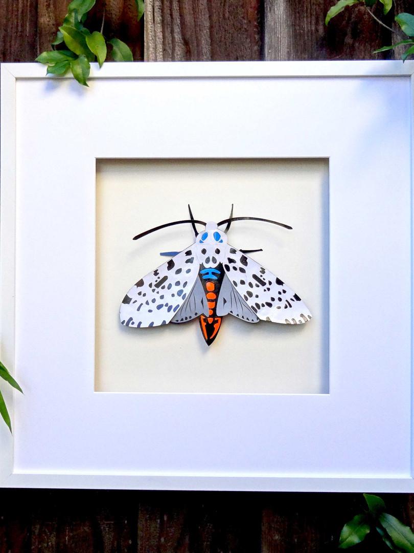 Moth Art Work
