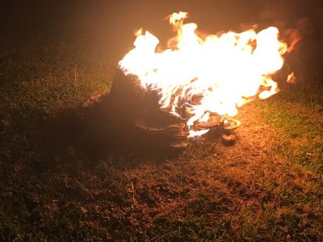 Burning a stump makes a great campfire