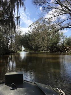 Boat ride on Bayou Dularge
