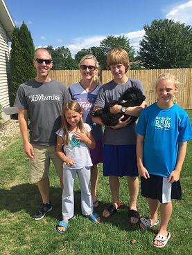 tri, phantom, bernedoodle puppies for sale, bernedoodle puppies for sale in Michigan, bernese mountain dog, poodle, bernedoodle, goldendoodle, labradoodle