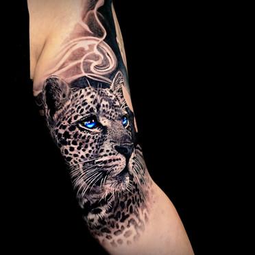 Leopard tattoo Coen Mitchell Tattoo Gold Takapuna Tattoo Studio Auckland New Zealand