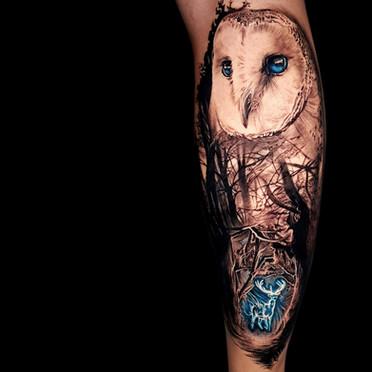 Coen Mitchell Tattoo Gold Takapuna Tattoo Studio Auckland New Zealand Harry Potter Owl tattoo