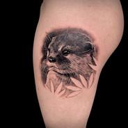 otter black Coen Mitchell Tattoo Gold Takapuna Tattoo Studio Auckland New Zealand