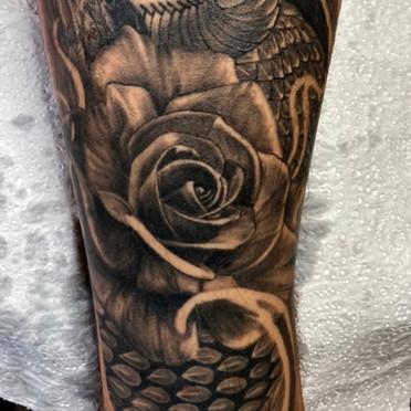 Tattoo Gold Takapuna New Zealand