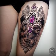 Coen Mitchell Tattoo Gold Takapuna Tattoo Studio Auckland New Zealand Dog Portrait tattoo
