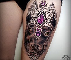Coen Mitchell Tattoo Gold Takapuna Tattoo Studio Auckland New Zealand Dog Portrait tattoo