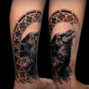 Coen Mitchell Tattoo Gold Takapuna Tattoo Studio Auckland New Zealand Raven tattoo