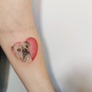 Tamara James Tattoo Gold Auckland Takapuna New Zealand