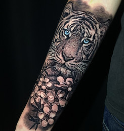 Cristiana Bugatti Tattoo Gold Auckland New Zealand Realism Tiger Tattoo