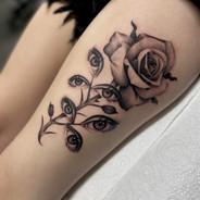 Matt Wilson Tattoo Gold Takapuna