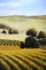Autumn in the Vineyard