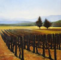 Vineyard Quiet