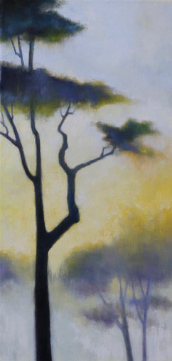 Sunset Through the Trees III
