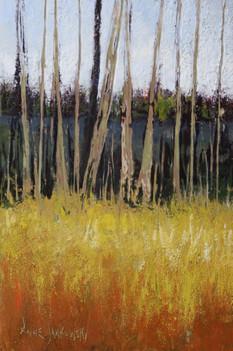Line of Trees II