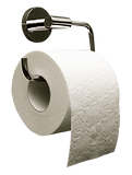 toilet paper.png