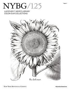 NYBG-Coloring-Book-01.jpg