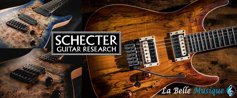 SCHECTER Guitar Research REAPER-6 et C-1 EXOTIC