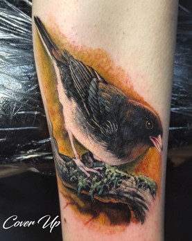cover up tattoo long island