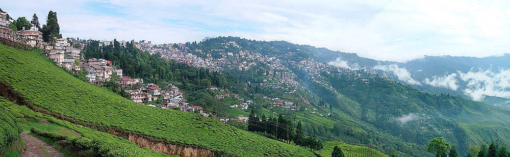 Green hills and town view of Darjeeling