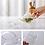Thumbnail: Transparent Teapot   Heat Resistant Glass
